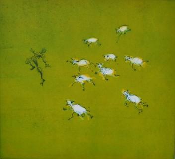 Man bang voor schapen